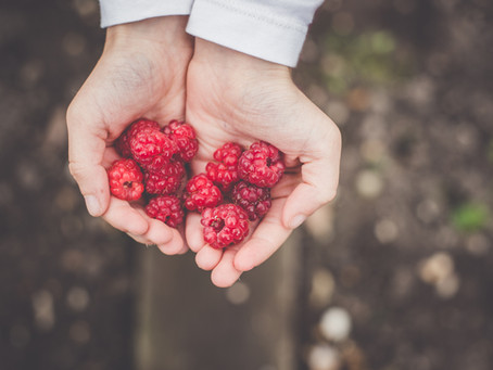 Berries for Fertility