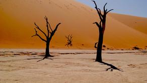 NAMIBIA CLASSICA da 2.940€
