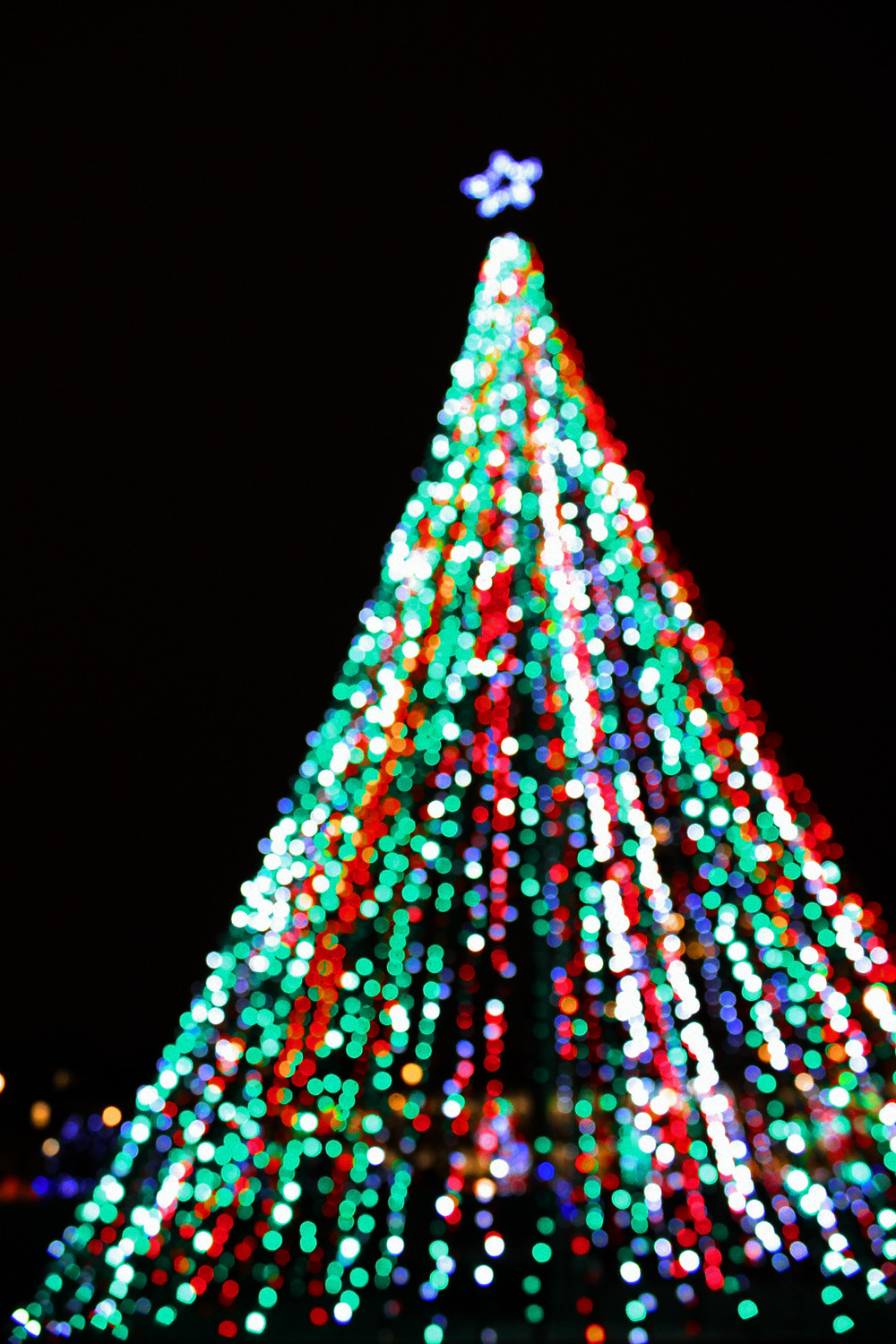 Check out a holiday festival in Lake County Florida this Thanksgiving weekend