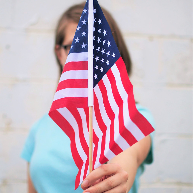 Citizenship Mentoring