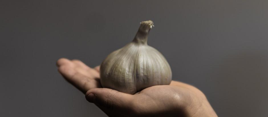 Let Garlic be your Antibiotic