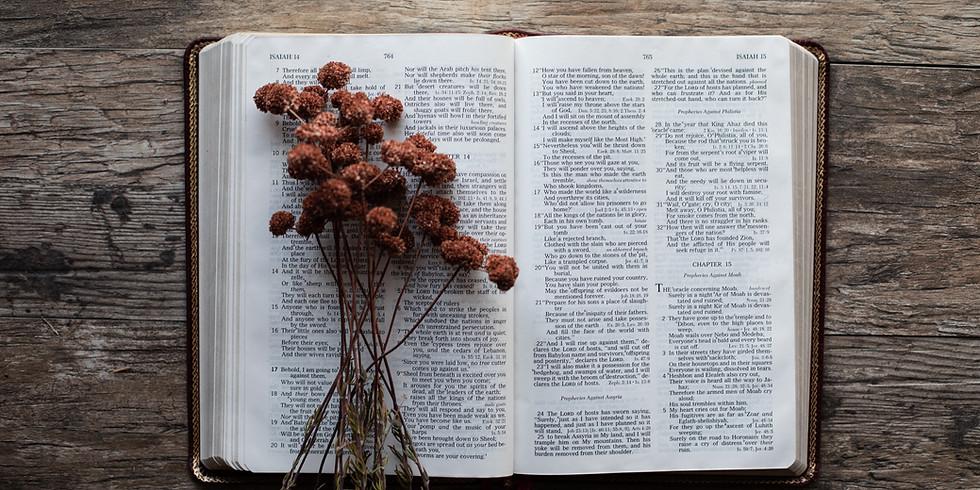 Genesis to Jesus Scripture Study