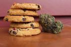 How Long Does A Cannabis High Last?