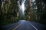 Oregon State Referrals
