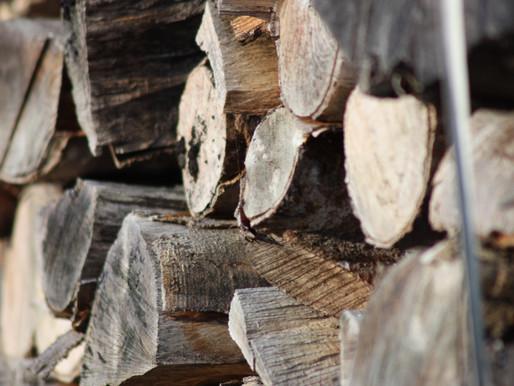 Corrientes se interesa en los nuevos usos de la madera.