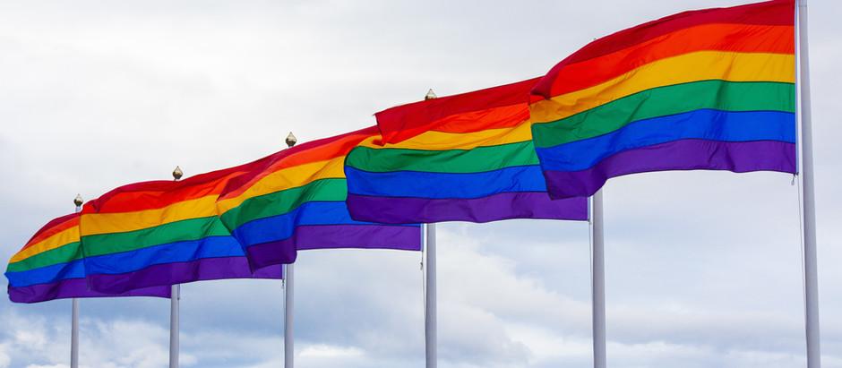 LGBTQI+ Dimensions to Mental Health