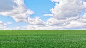 Céu e Terra em Equilíbrio