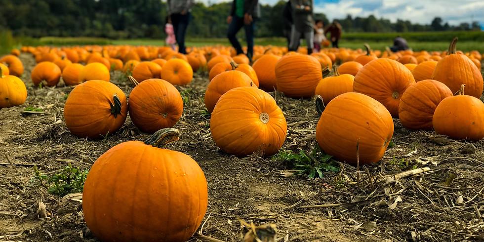 Client Event: Pumpkin Patch