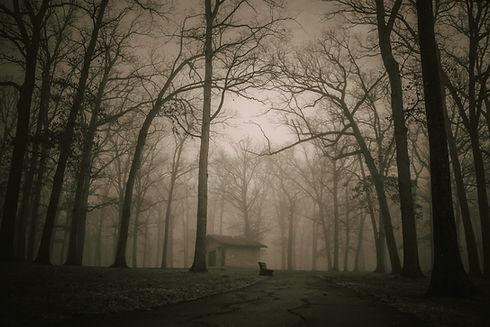 Image by Rythik