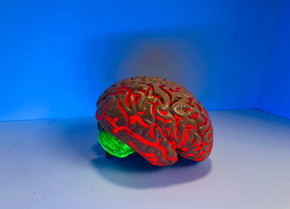Three Things to Know About the Teenage Brain