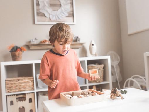 montessori in our home