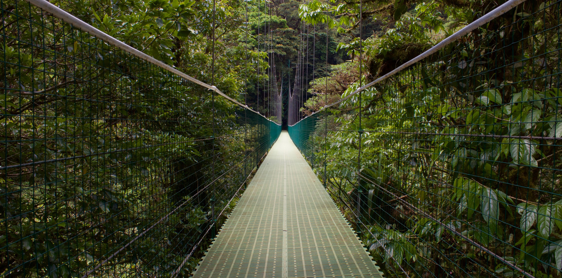 DAY 6 - Monteverde