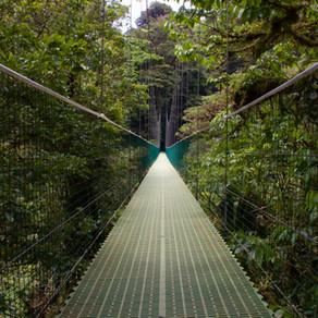 Le Costa Rica rouvre ses frontières aux touristes et sans test PCR