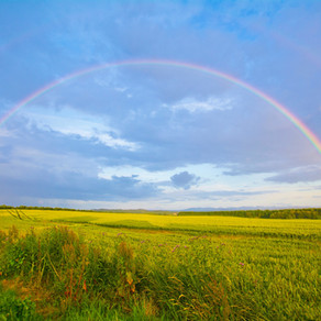 becoming a rainbow again by Linda M. Crate