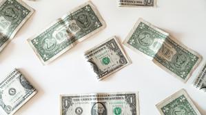 A Dollar is a Dollar is a Dollar
