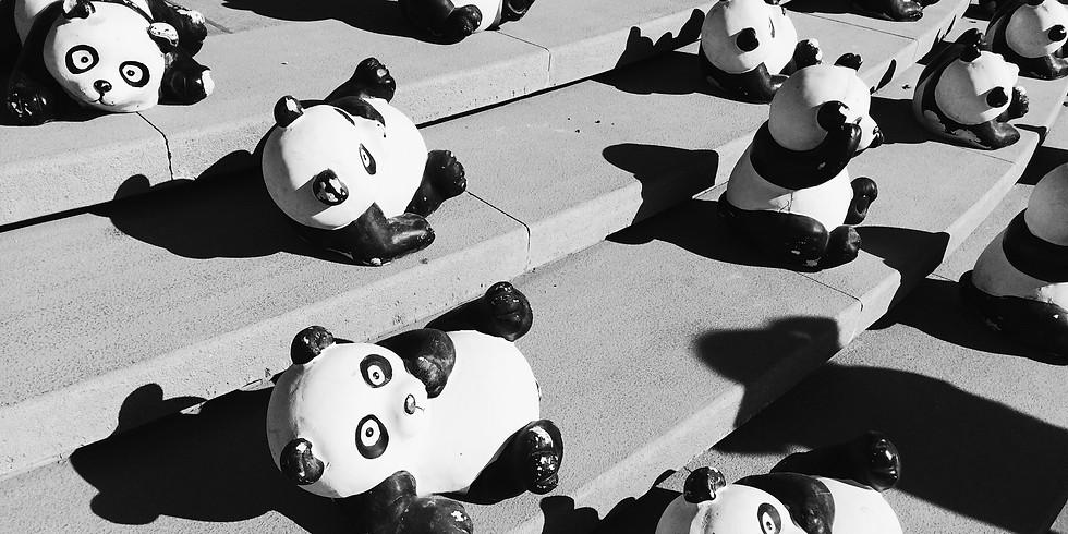 Panda Art Contest (1)