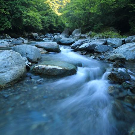 Poetry Corner: I Wait by the River, Poem Based on Habakkuk 2:17-20