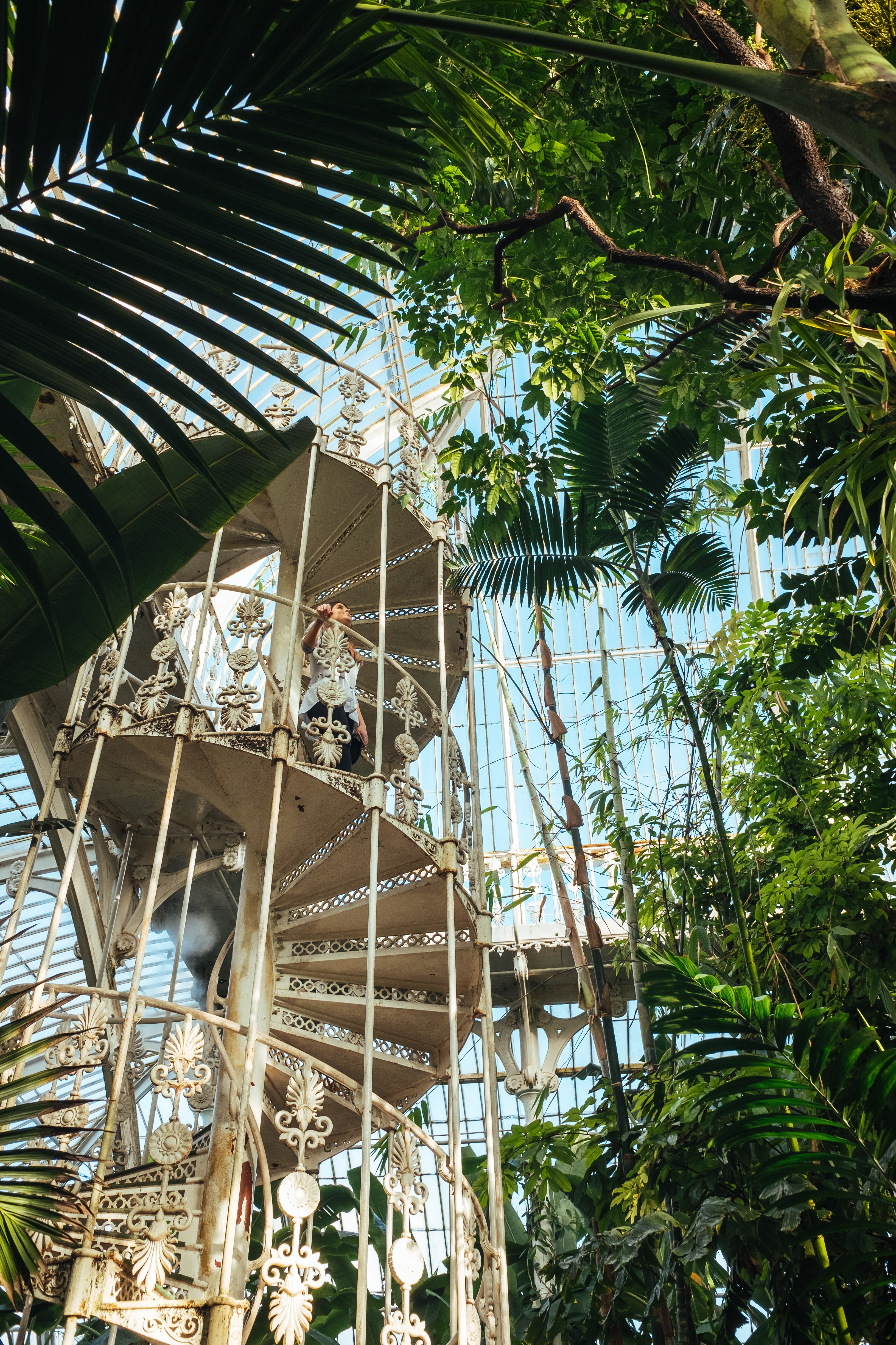 The History & Highlights of Kew Gardens