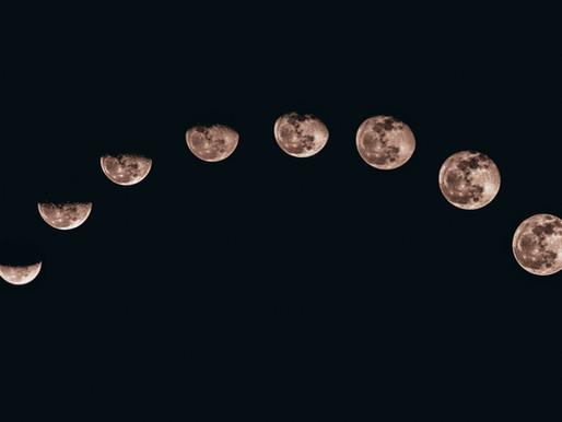 Ayurveda and the menstrual cycle