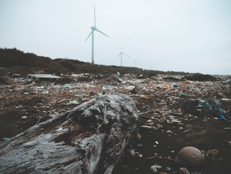 I Reati Ambientali nel 2020