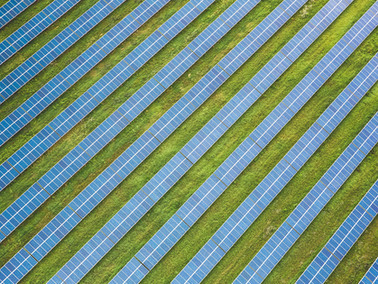 Total Buys Stake in Adani Green Energy, World's Biggest Solar Developer