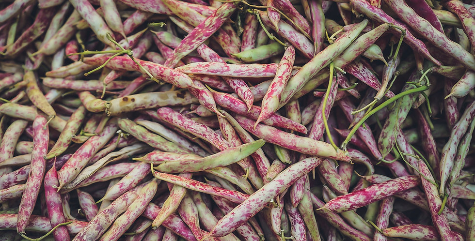Dragon Tongue Beans