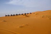 Sahara, Marruecos