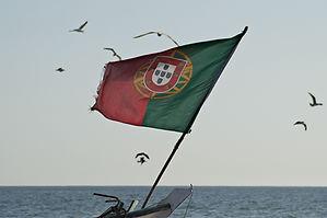 Image by Pedro Santos