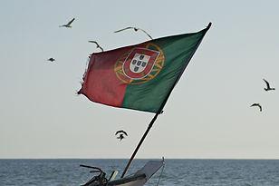 Image de Pedro Santos