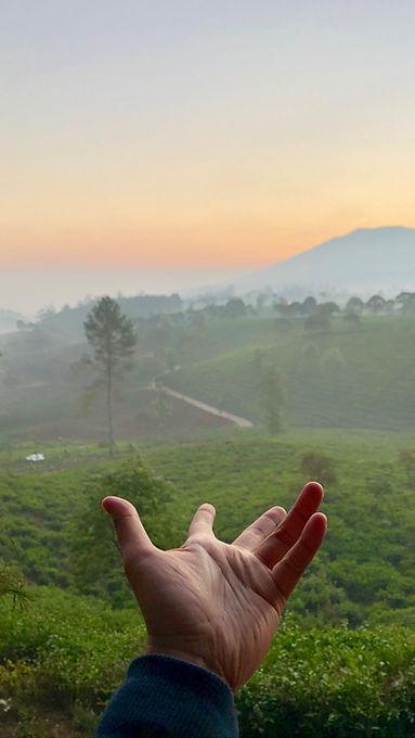 Image by Hidayat Abisena