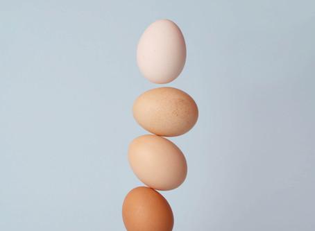 Your Nest Egg