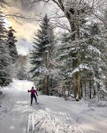 ski de fond ou biathlon
