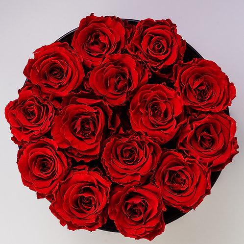 Roses 40 cm 100 stems