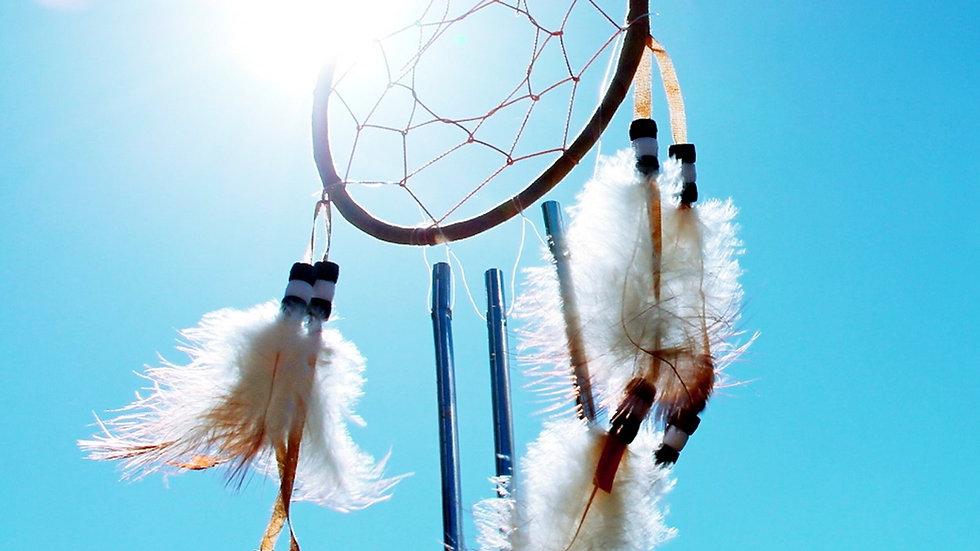 Le souffle sacré Souvenirs du Chamane Amérindien