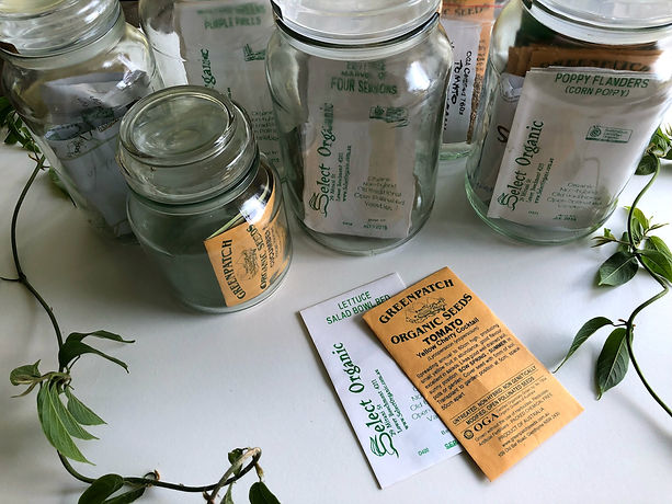 Image of seed packets by Eco Warrior Princess