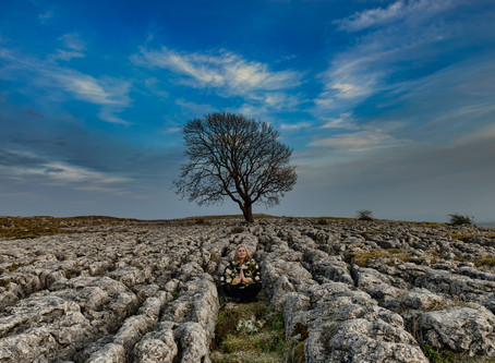 Yorkshire Dales - Your Photography Holiday in 2020?