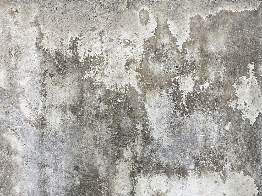 traiter le mur humide avant peinture