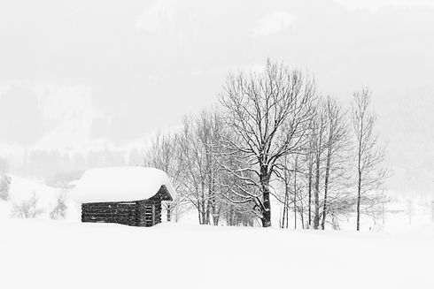 Small log cabin covered in snow