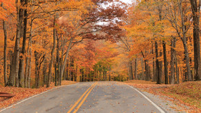 Scenic New Jersey Roads Perfect For Those Long Autumn Drives
