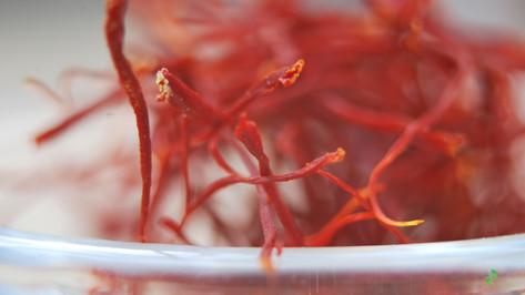 什麼是藏紅花,為什麼這麼貴? What is Saffron and Why is it So Expensive?