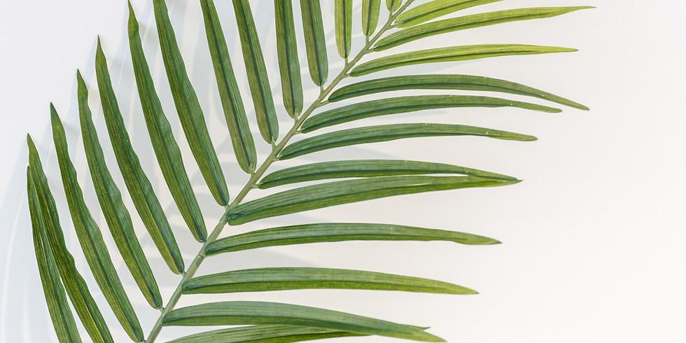 Vigil Mass of Palm Sunday
