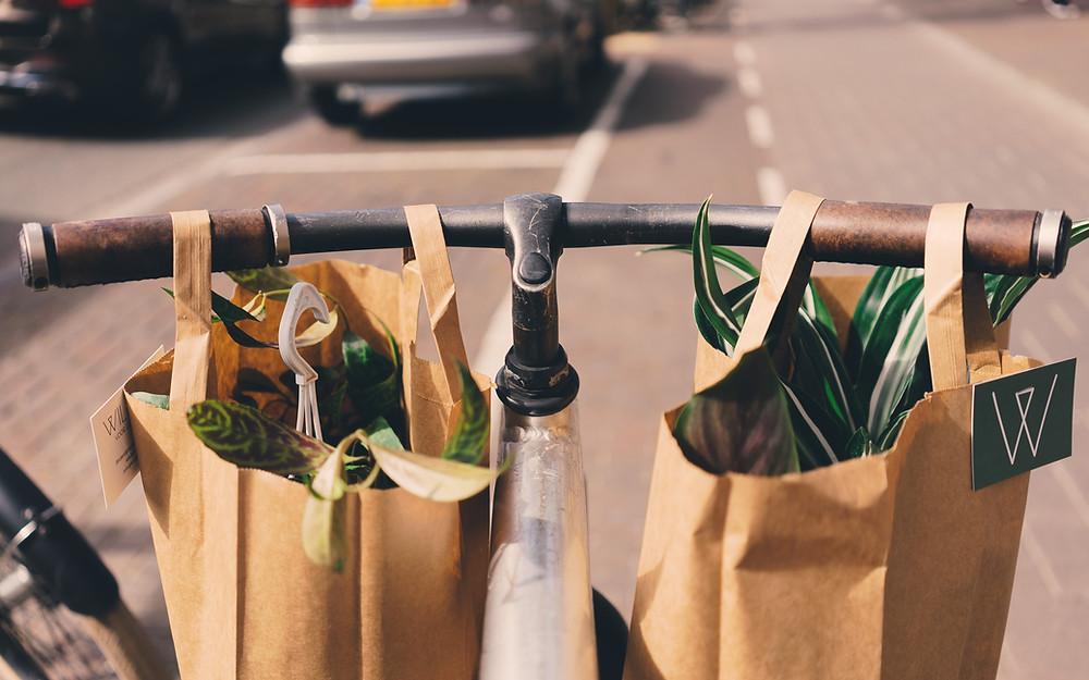consumismo; greenwashing; consumo consciente; desperdício zero; reciclagem; salvar o mundo; sustentabilidade