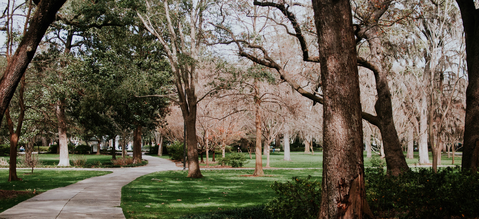 Manson Park