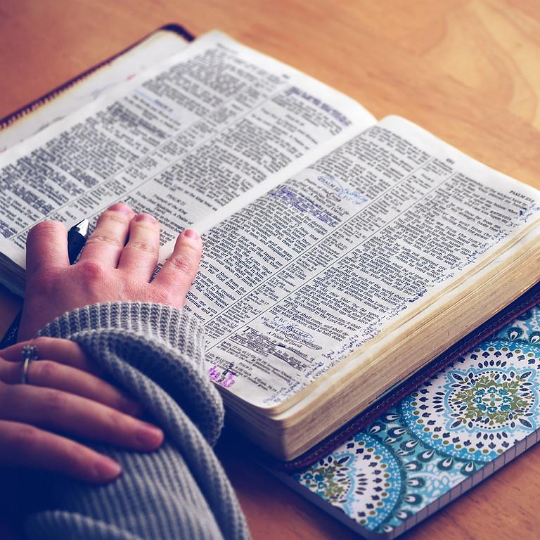 Beginning Bible Study with Fr. Krikor