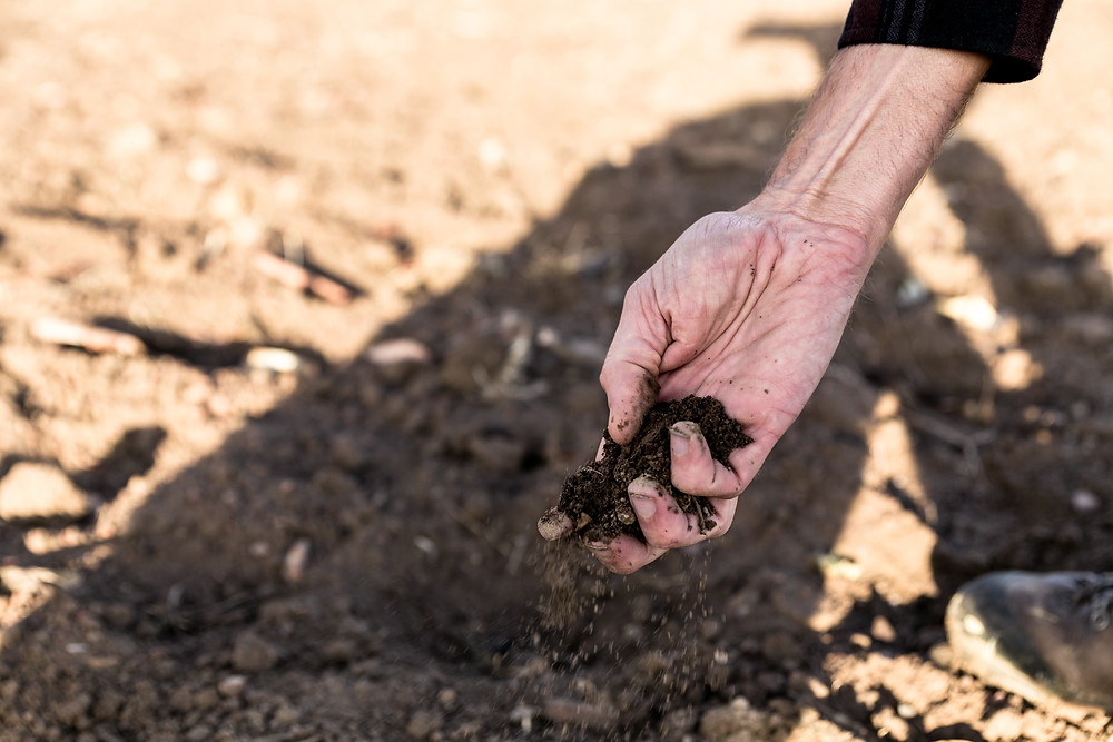 hand picking up handful of dry dirt