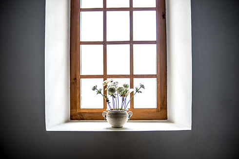 Window with plant on the window sill