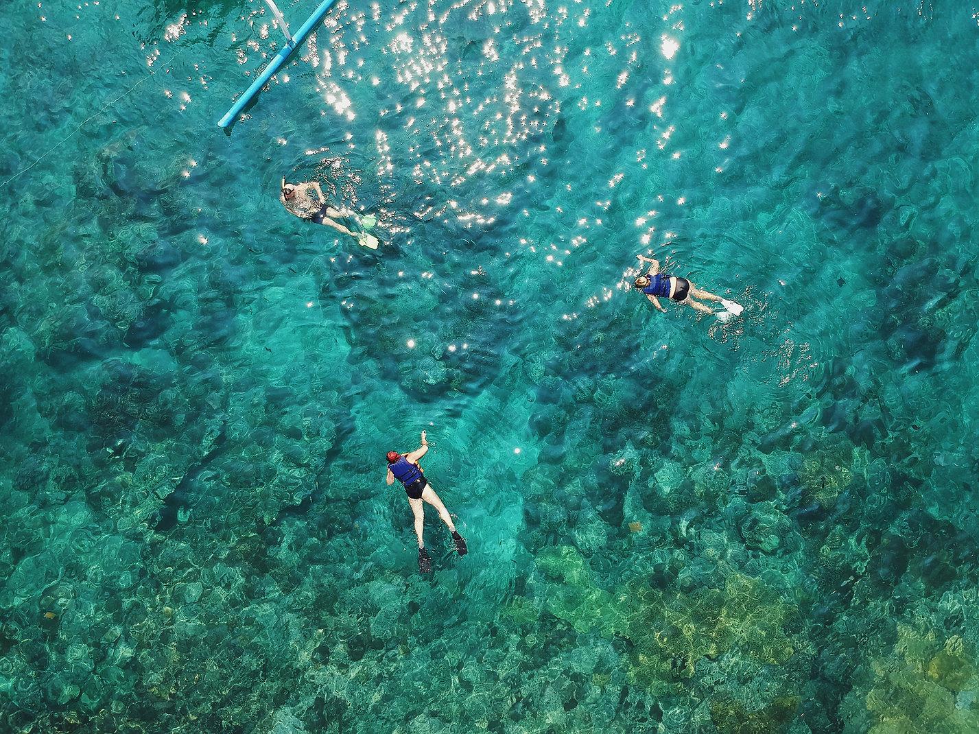 Kayak Snorkeling Tour Mini Eco Adventure Pirate Snorkeling Shack Fajardo Puerto Rico