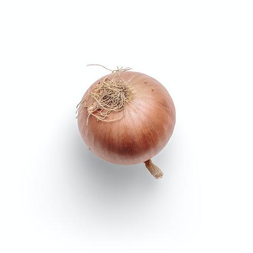 Onion Walla Walla 6 pack