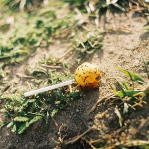 Resurrection Lollipop by Anna Spence