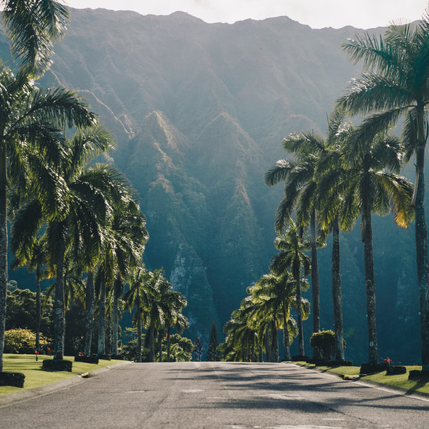 Aloha, Explore Hawaii